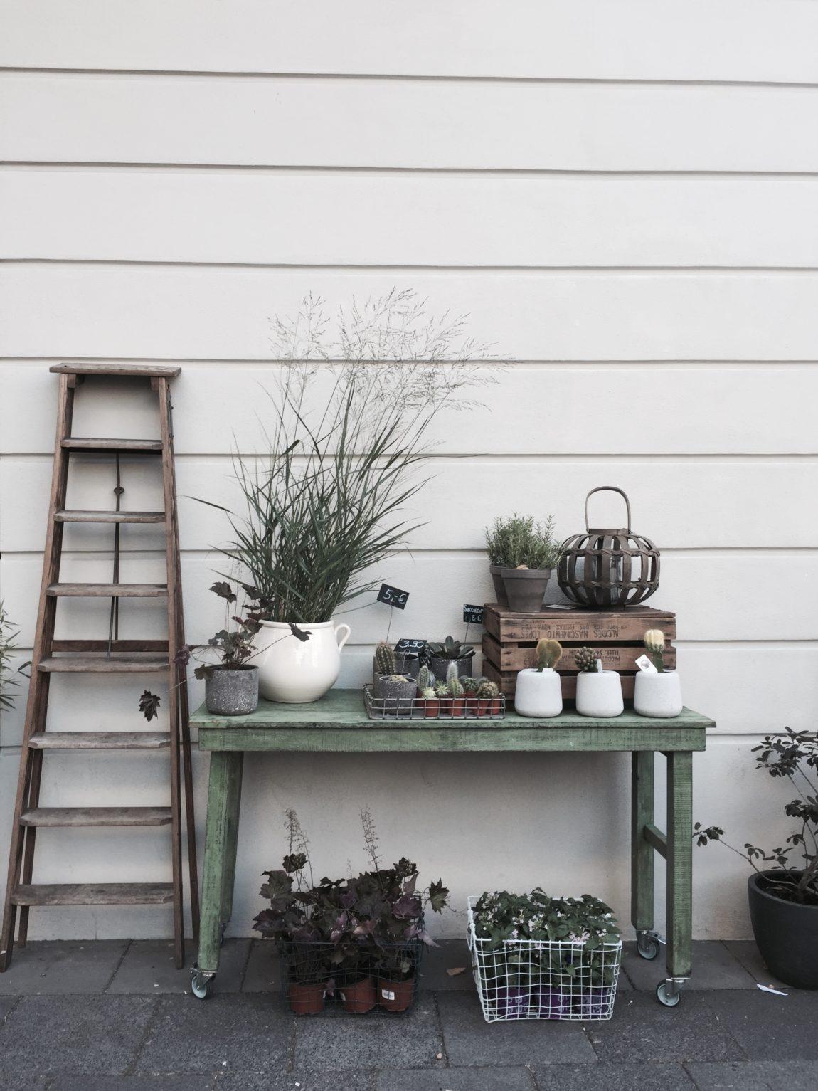garten t r ume werden wahr garten und landschaftsbau seitz mannheim stra enheim 9 11. Black Bedroom Furniture Sets. Home Design Ideas