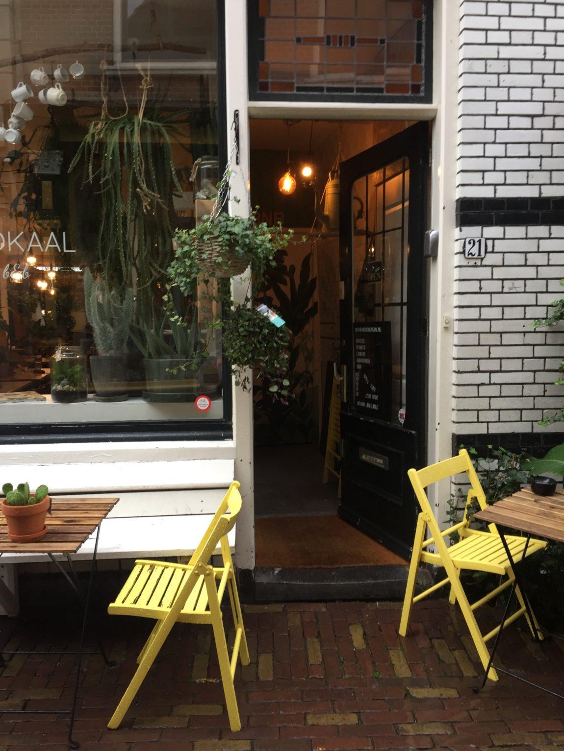 Holland Alkmaar Café groenlokaal Badepraline Naturseifen Duschriegel Pflanzen Floristin Duschcreme Naturseife