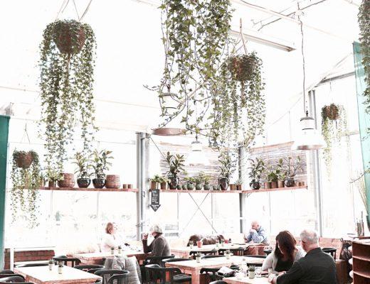Zum Coaching & Café trinken ins Glashaus - Café Huben