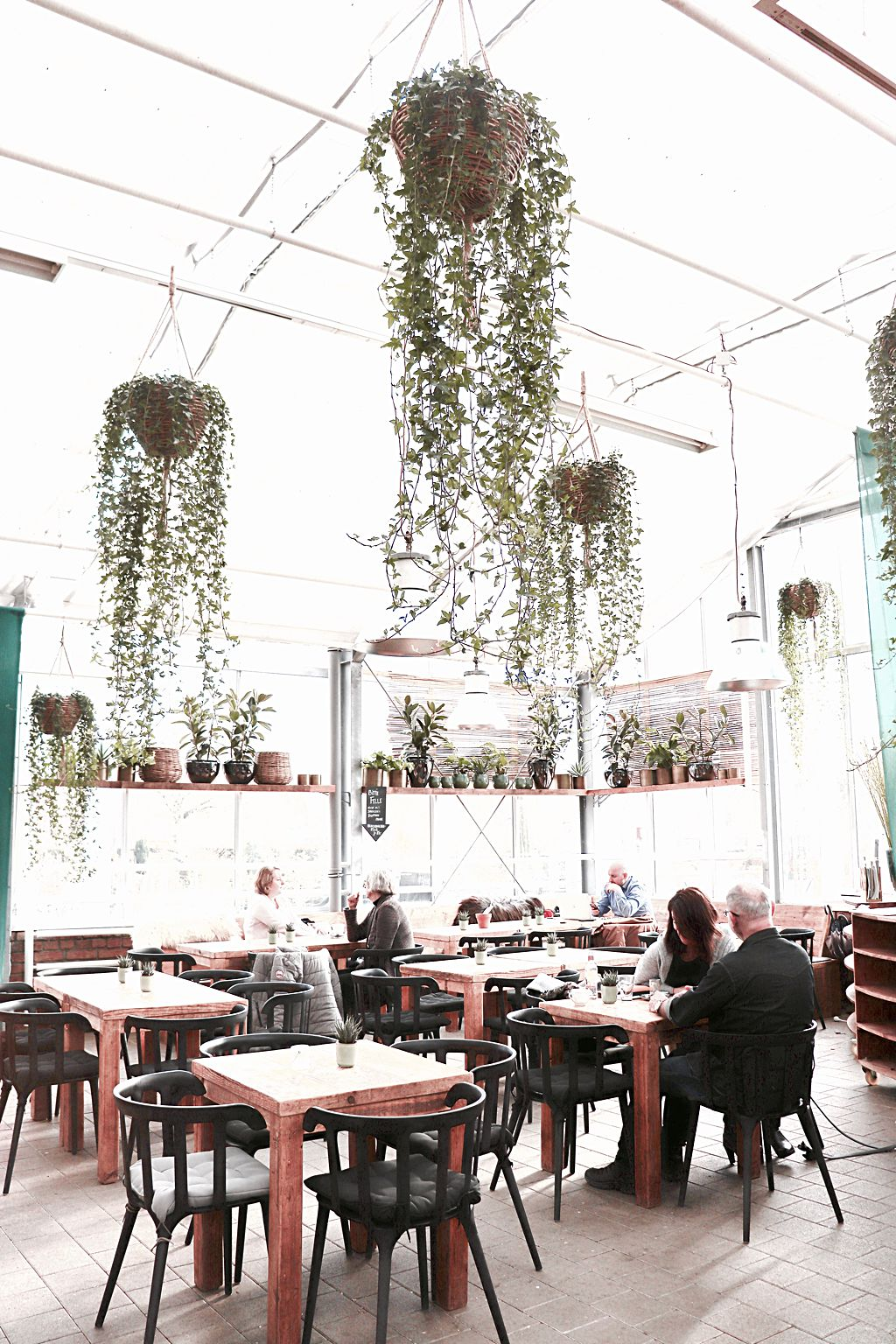 Café Huben, Ladenburg, Heidelberg, Badepraline on Tour, Ladenburger Gartenlust, Frühling bitte - Naturseifen, Blumen, Pflanzen, Baumschule, Baumschule Huben, Gartencenter, Café, Adventslust Huben