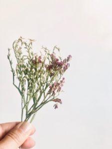Schöne Blumensträuße einfach trocknen