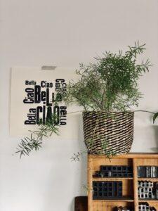 Papelami - das wunderschöne Atelier von Mo